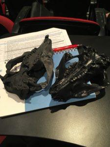 3-D Animal Skulls